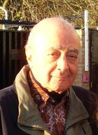 Mohamed Al-Fayed photo